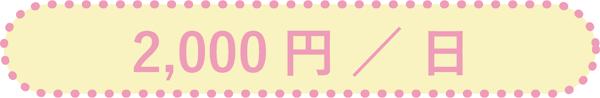2,000円/日