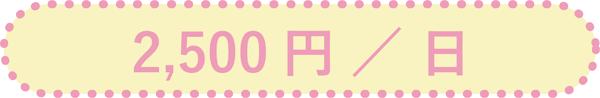 2,500円/日